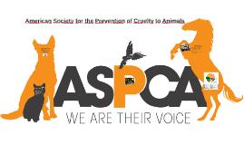 Copy of Acerca de la ASPCA
