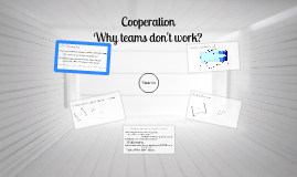 Cooperations & Team work