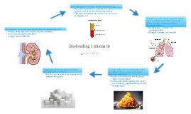 Doelstelling 1 (thema 8)