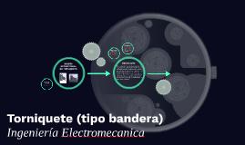 DISEÑO ESTRUCTURAL DE TORNIQUETE