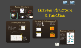 BI 2: Enzyme Structure & Function