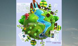 Copy of Medio ambiente
