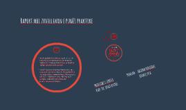 Raport mbi zhvillimin e punës praktike