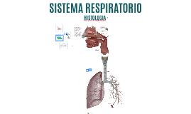 Histología del Sistema Respiratorio