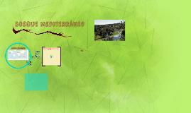 Copy of Red trófica del bosque mediterráneo