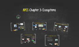 Buford APES Ch 3: Ecosystems