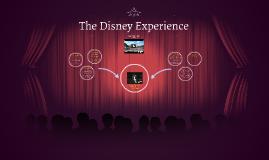 The Disney Experience