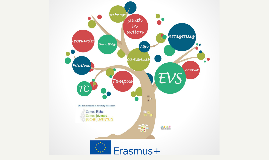 EVS - UMH