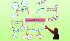 Special Plural Nouns