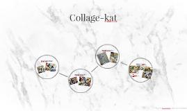 Collage-kat