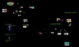 Copy of educacion visual