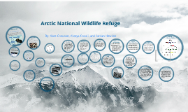 APES ANWR Research Project