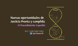 Procedimiento Expedito: Nuevas oportunidades de justicia pronta y cumplida.  Callao, 29 de Agos 2016