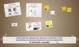 DETECCIÓN DEL GENOMA DEL VIRUS DE LA HEPATITIS E (VHE)