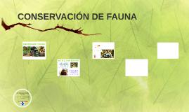 CONSERVACIÓN DE FAUNA