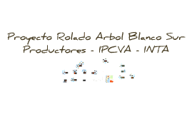 Arbol Blanco Sur