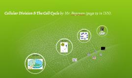 Cellular Division - 7th Grade