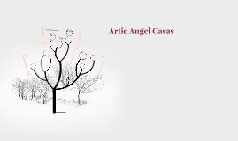 Artie Angel Casas