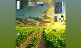 Contemplem el paisatge