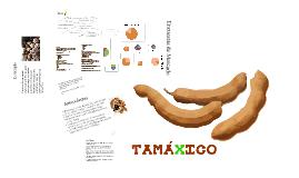 Tamáxico