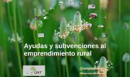 AER - Ayudas y subvenciones al emprendimiento Rural - Una visión critica