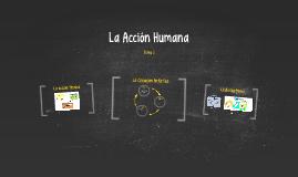 La Acción Humana
