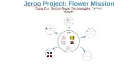 Jeroo Project