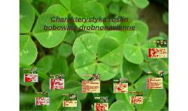 Charakterystyka roślin motylkowych