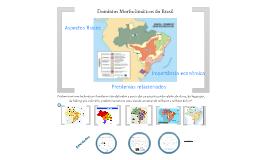 Copy of Domínios Morfoclimáticos do Brasil