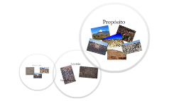 Los Geoglifos en el Desierto de Atacama