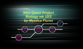 Web Quest Project