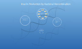 Insulin Production by Bacterial Recombination