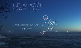 Copy of Inflamación: Cambios vasculares