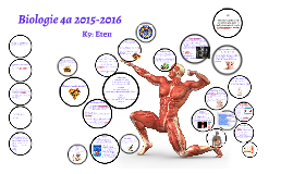 Biologie 4a 2015-2016