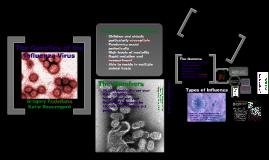 Genetics of the Influenza Virus