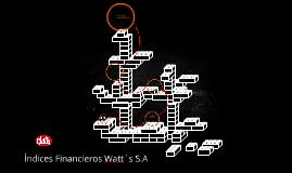 Índices Financieros Watt´s S.A