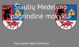 Medelyno mokykla