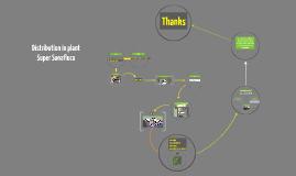 Best the distribution plan in Super SonaFluca