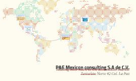 P&E Mexican consulting S.A de C.V.
