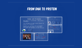 Copy of From DNA to Protein