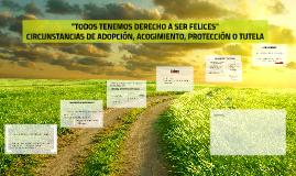 CIRCUNSTANCIAS DE ADOPCIÓN, ACOGIMIENTO, PROTECCIÓN O TUTELA