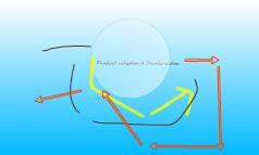 product adaptation & standarzation