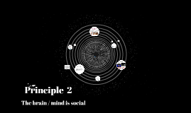 principle2  The brain/mind is social
