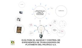 GUÍA PARA EL MANEJO Y CONTROL DE EXPEDIENTES DE TRABAJADORES