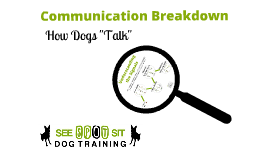 Copy of Copy of Communication: How Dog's Talk