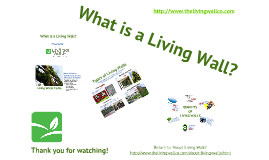 Introduction to Living Walls