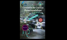 COMISIÓN DE CUENCA PRESA GUADALUPE