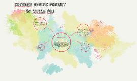 Softech Grains project