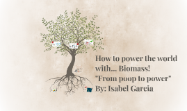 How to power the world with... Biomass