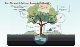Rede Nacional de Cuidados Continuados Integrados